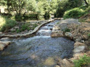 Naturaleza Sierra de Gata