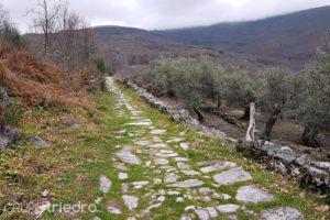 Senda romana sierra de Gata